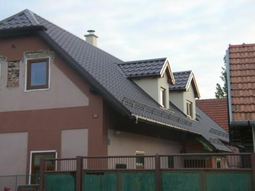 střechy 2010 001